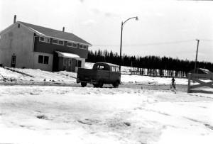Juniper spring 1960s