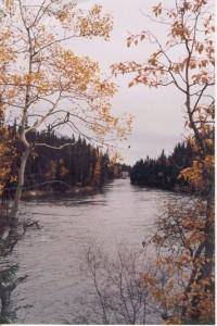 nice river scene