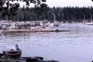 paint lake docks 1969