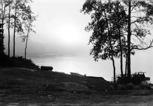 river fog 1966