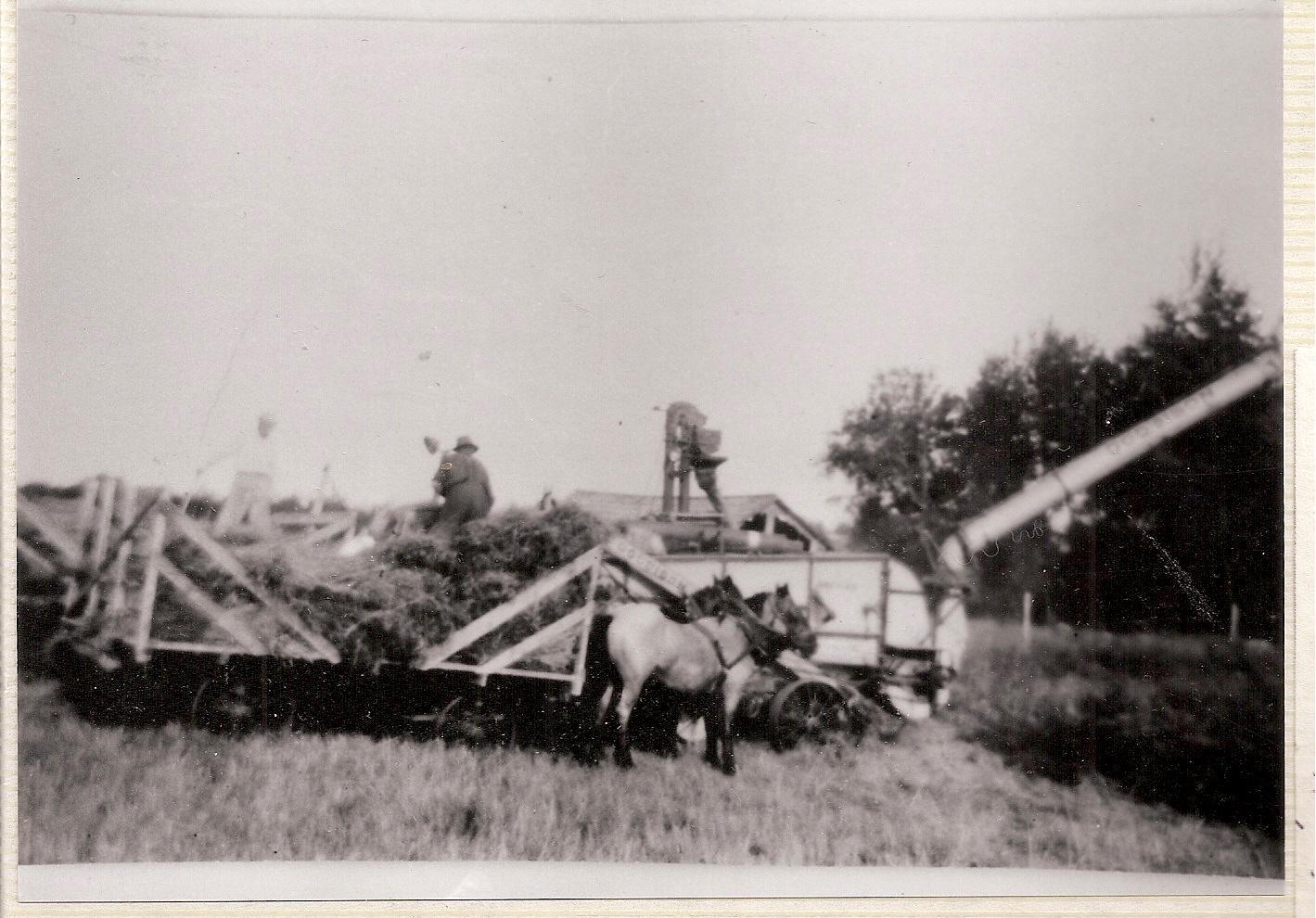 Leons harvest in 1942