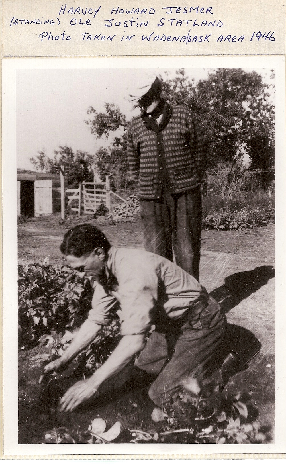 Harvey jesmer in garden with Ole Statland-1946