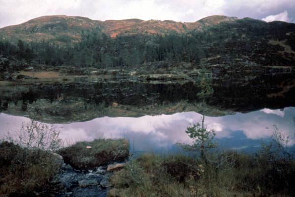 lake in namsos
