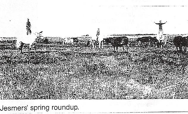Jesmer Spring roundup