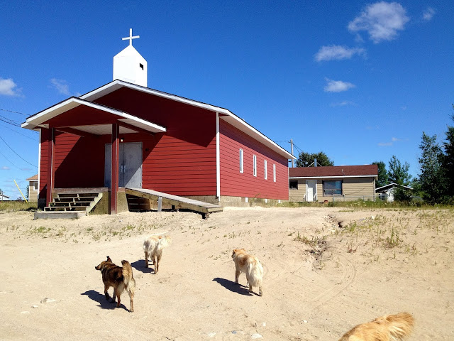 dogs and church