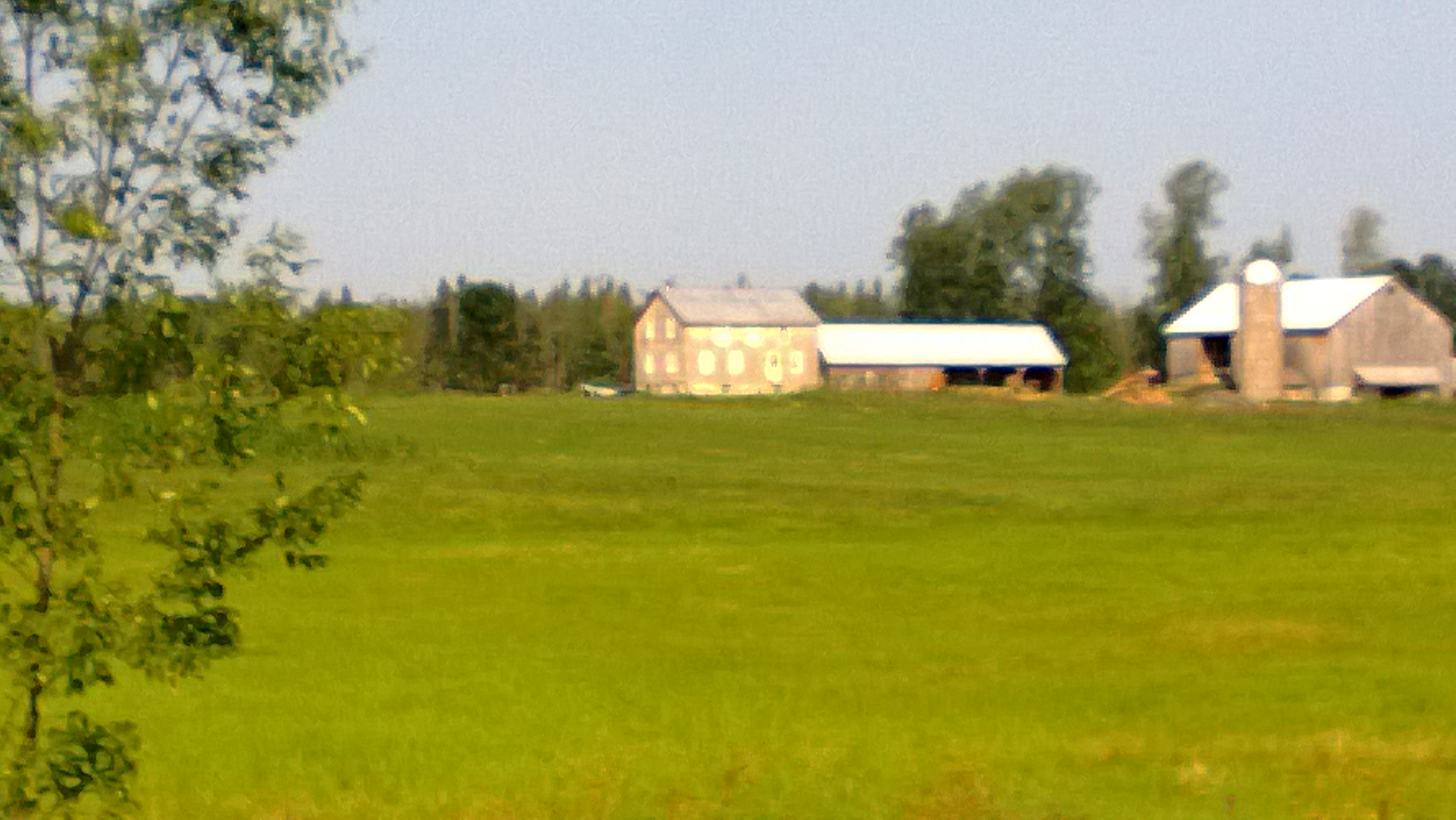 view of an old farm