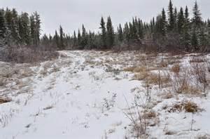 winter road in fall