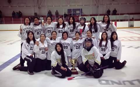 Nabinamik warriors broomball 2014