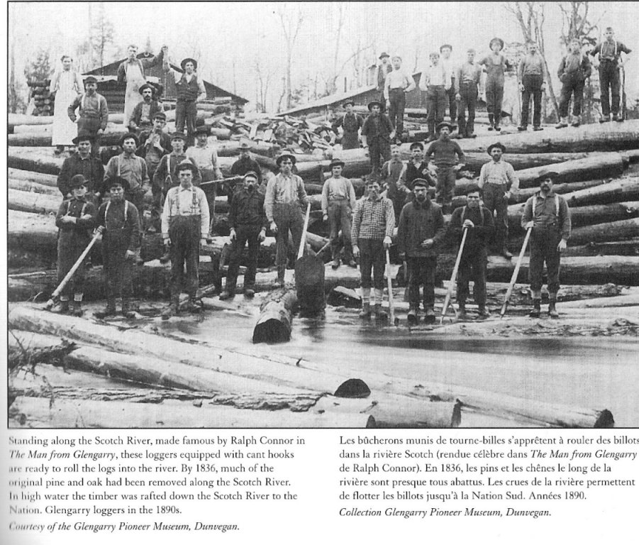 glengary loggers of the 1890s