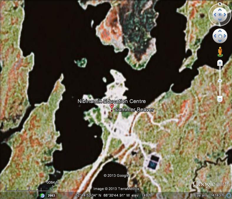 google arial map