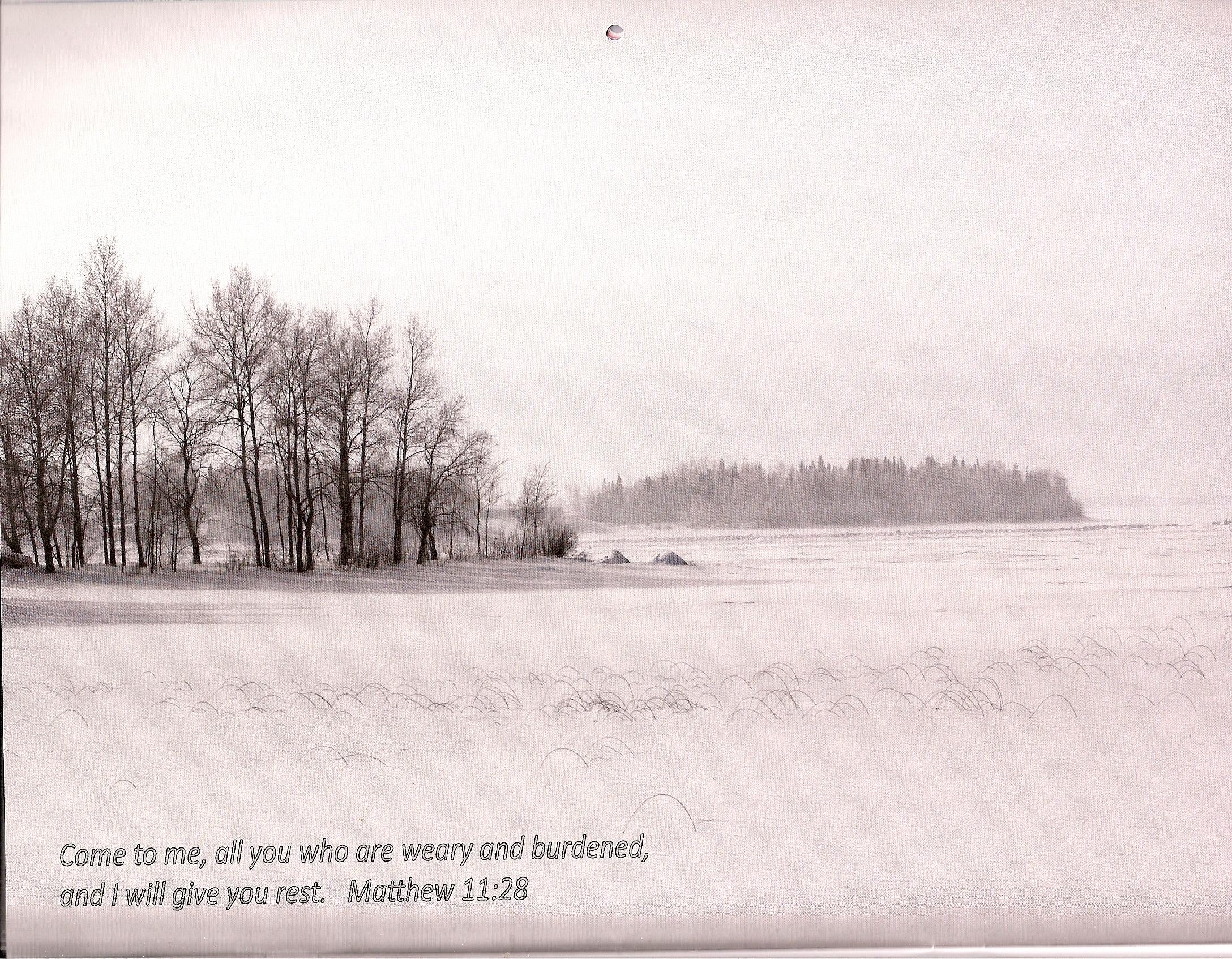 winter shore line round lake 2015